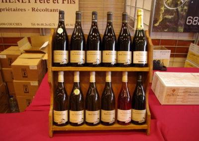 Lions-Annecy-Lac-Salon-des-Vins-2014-Pentax-29